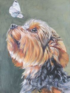 Yorkshire Terrier yorkie portrait CANVAS print of by TheDogLover, $39.99