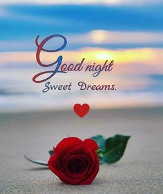 Good Night Friends Images, Good Night Thoughts, New Good Night Images, Romantic Good Night Image, Lovely Good Night, Beautiful Good Night Images, Good Night Gif, Good Night Messages, Good Night Sweet Dreams
