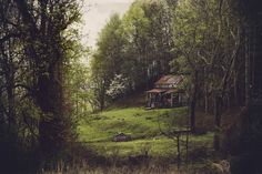 9. Lonely House in the Woods of Franklin County