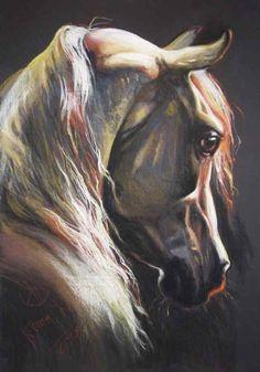 """Andalusian horse"" dry pastel crayon 2009 by Kamila Karst www. Horse Drawings, Animal Drawings, Art Drawings, Arte Equina, Horse Artwork, Horse Books, White Horses, Pastel Art, Equine Art"