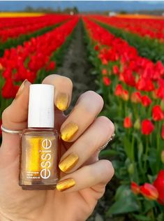 Essie Summer 2021 Collection - Livwithbiv Essie, Nail Polish, Nails, Beauty, Finger Nails, Ongles, Nail Polishes, Polish, Beauty Illustration
