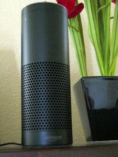 Playing Games With the Amazon Echo (Review This). The Amazon Echo looks like a black Pringles can and fits in with any decor. Request your invite to order one today!