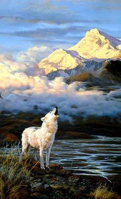 John Seerey-Lester Alpenglow -Arctic Wolf