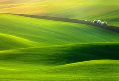 Spring time (Photo by Krzysztof Browko) - 50 Mind-Blowing Examples of Landscape Photography | Bored Panda