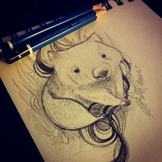 Little wombat