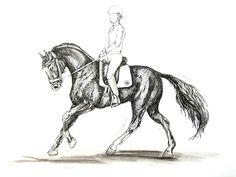 MZ - horse art: Galop II