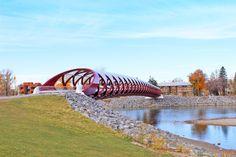 AM Dolce Vita: Calgary in the Fall, Calgary Peace Bridge from Eau Claire Park
