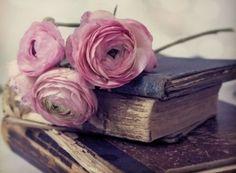 Imagen de book, rose, and flowers
