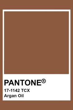 Pantone Swatches, Paint Swatches, Color Swatches, Pantone Colour Palettes, Pantone Color, Color Patterns, Color Schemes, Brown Pantone, Color Tag