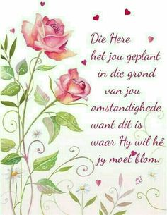Welcome to my Boards, No Pin Limits Ever, Please Enjoy your Stay & visit as often as you wish, Thank you 😊 Afrikaanse Quotes, Inspirational Qoutes, Motivational Quotes, Goeie Nag, Goeie More, Good Morning Wishes, Rose Cottage, True Words, Christian Quotes