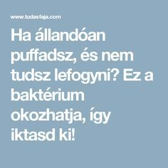 Ha állandóan puffadsz, és nem tudsz lefogyni? Ez a baktérium okozhatja, így iktasd ki! Ser Fitness, Health Fitness, The Cure, Food And Drink, Healthy, Life, Diets, Healthy Dieting, Health