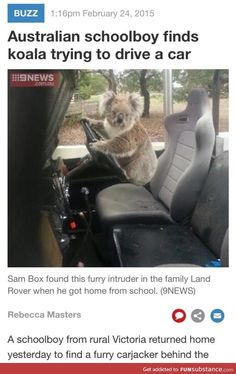 Meanwhile in Australia.
