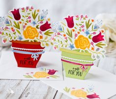 A Gift For You Potted Flowers Cards by Betsy Veldman for Papertrey Ink (March 2017)