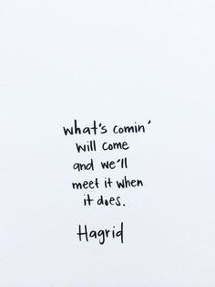 Meet it hagrid quote