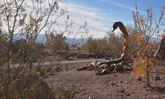 The Hidden Nature Trail And Rock Garden In Nevada That's Filled With Giant Statues And Desert Views Boulder City Nevada, Nevada Desert, Nevada City, Desert Animals, Las Vegas Vacation, Canyon Park, Mountain Bike Trails, Local Attractions, Adventure Activities