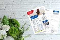 Flyerdesign Allianz Kundenauftrag