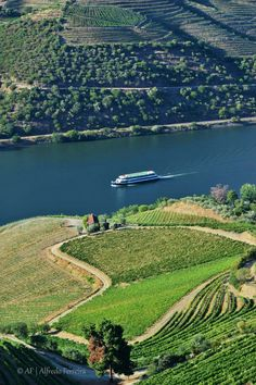 valley of Douro river, Spain And Portugal, Portugal Travel, Portugal Trip, Portugal Places To Visit, Douro Portugal, Sea Activities, Portuguese Culture, Douro Valley, The Beautiful Country