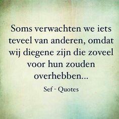Sef - quotes