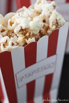Snickerdoodle Popcorn!  Cinnamon sugar coated popcorn, drizzled with white chocolate!