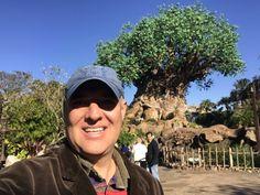 Disney Animal Kingdom Park Hard Rock Cafe Orlando, Cape Canaveral, Disney Magic Kingdom, Disney Springs, Nashville Tennessee, Animal Kingdom, My Photos, Park, Animals