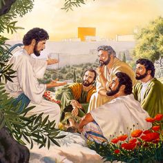 Why are there prophesies in the bible? On the Mount of Olives, Jesus speaks with some of his apostles...