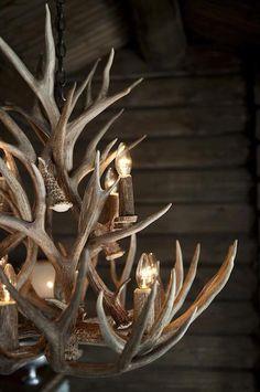 Antler chandelier for living room Antler Lights, Antler Chandelier, Rustic Charm, Rustic Style, Rustic Decor, Alpine Style, Chandelier In Living Room, Rustic Lighting, Cabins In The Woods