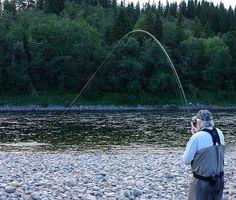 This is how to start a saturday evening folks! My Dad stretching his Scientific Angler UST lines and giving the Scott rod a propper work out...!🤘😎 #flyfisheurope #whyiffe #thetugisthedrug #benditlikeabanana #flyonly #mydad #scandistyle #norwegianchrome #seemgard #namsen #scientificanglers #scientificanglersust #scottflyrods #loonoutdoors #ahrexhooks #theflycompany #badassnothalfass #makingmemories #family #flyfishingjunkie #atlanticsalmon #visitnorway #getoutside #liveterbestute #laksefiske #workhardplayhard