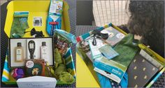 August Pet Treater Box Review and Meadow Investigating