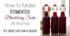 Let's Make Fermented Blackberry Soda! - And Here We Are - As with anything fermented, always check that the item hasn't gone alcoholic!  Otherwise a wonderful way to get probiotics into your diet - tasty, too!