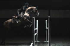 Here's a horse & rider team that can 'see' their own greatness.   Sports Studio: Horse Jumping with Malin Baryard - H&M Life