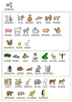 Webová alba Picasa Preschool Worksheets, Preschool Activities, Schools First, Stories For Kids, English Language, Teaching, Education, Animals, Language