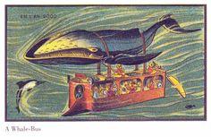 La baleine-bus