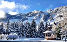 Winter Vacation - World Famous Winter Resorts - Aspen, Colorado, USA Free Vacations, Vacation Destinations, Vacation Spots, Aspen Colorado, Colorado Trip, Aspen Mountain, Content Marketing, Places To Visit, Snow