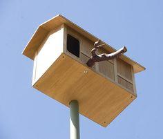 Owl House - Somebody make me one!