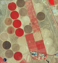 Saudi Arabian arial agriculture shots