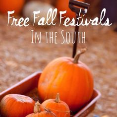 Can't wait to celebrate autumn at these free events! ♡ Fall Travel Inspiration #DTNFallContest