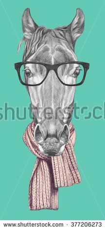 Portrait of Horse with glasses and scarf. Hand drawn illustration.