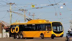 Wellington trolleybus