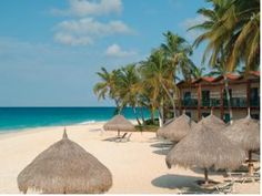 Divi Aruba All Inclusive Oranjestad, Aruba