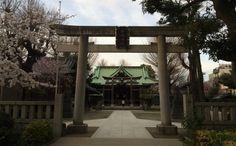 Belief in Tokyo / Shrine