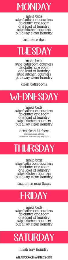 Daily Cleaning Schedule:  if only I could stick to it
