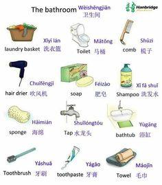 Vocabulario del baño