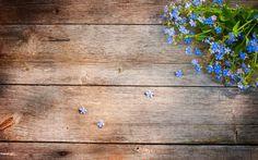 Houten wallpaper met blauwe bloemen | Bureaublad Achtergronden