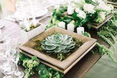 Decoração da mesa com suculentas
