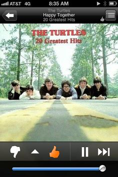 the turtles 20 greatest hits