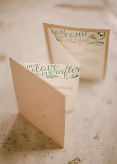 I like the idea of a accordion fold out program like this - The Groom and the Gypsy | Bride and Breakfast