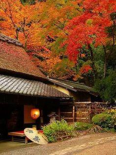 Autumn in Kyoto, Japan Japanese Garden Design, Japanese Landscape, Japanese Architecture, Japanese House, Japanese Gardens, Japanese Style, Japan Kultur, Okinawa, Japanese Culture