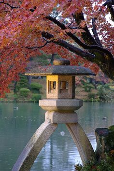 Kenrokuen Park, Kanazawa, Japan. -I used to walk this park after school quite often or come here to study.