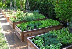 Resultado de imagen para camas bioclimaticas para terraza huerto