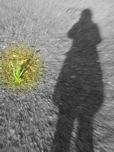 http://www.heelnederlandschrijft.nl/lezen/laat-in-de-middag-3439  ik zoek een pad  dat begaanbaar is  nu schaduwen  langer worden en de avond valt